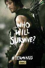 The Walking Dead Daryl Poster -
