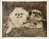 American Etching of Pekingese Dogs