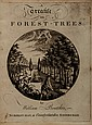 Boutcher (William) A Treatise on Forest-Trees...,