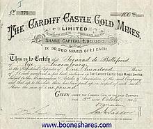 CARDIFF CASTLE GOLD MINES LTD.