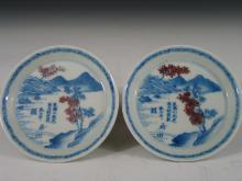 Chinese Blue and White and Underglaze Red Porcelain