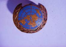 UNITED NATION PIN
