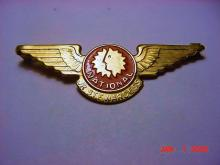 NATIONAL AIRLINES PIN