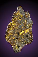 NEW DIOGENITE METEORITE SLICE