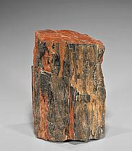 Small Petrified Wood Trunk