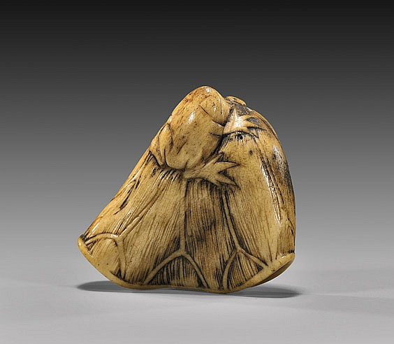 ANTIQUE STAG ANTLER NETSUKE: Toad