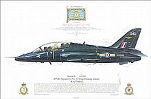 Hawk T1 multiple signed RAF print. Nice print measuring 44cm x 29cm of a Hawk T1 of 208(R) Squadron. Produced in 2007 as part of the acclaimed Squadro