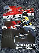 Ralf Schumacher F1 Legend 11x8 Magazine Photo
