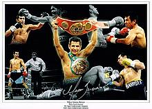 Marco Antonio Barrera boxing champion Signed 16 X