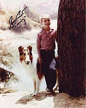 Lassie - 8x10 Inch Photo Signed By Child Star Jon