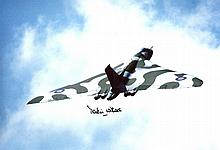 Falklands Bomber Pilot - 8x12 Inch Photo Of Vulcan