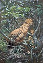 § Raymond Sheppard - Study of a Coq of the Roq