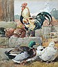 Harrison William Weir (British, 1824-1906) - A Cockerel, Hens and Ducks in a Farmyard - signed centre left