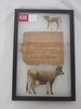 Tin Jersey DeLaval cow & calf with envelope