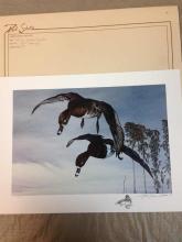 Vintage 1987 Autographed Wildlife Ltd. Ed. Stamp Print by Paul Schulz.