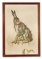 Philip Webb (1831-1915), the drawing of a hare for