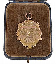 Angling, gold prize medal 1937, two fish and angling implements