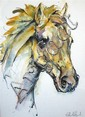 Watercolour of horse indistinctly signed