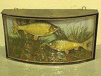 PAIR OF SPECIMEN BREAM, amongst foliage, gilt