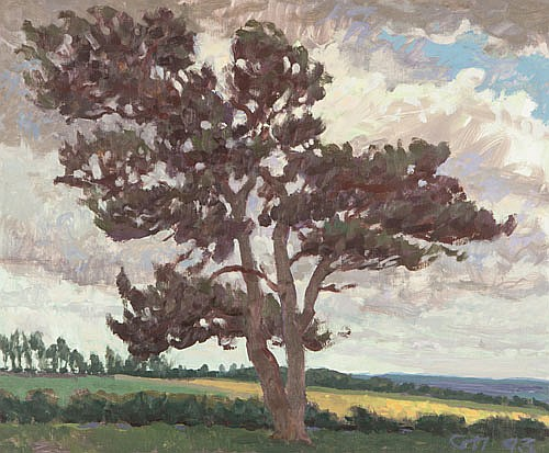 GEORGE HAYNES (B. 1938), NEW FOREST MOORLAND,