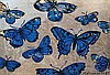 DAVID BROMLEY (B. 1960) BUTTERFLIES Signed lower