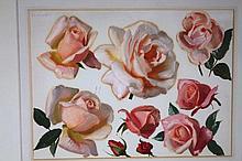 20th Century school. Stylish still life roses, oil on paper, 20.5cm x 38cm.