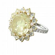 Platinum 18K Gold 19.00ct Fancy Diamond Cocktail Ring