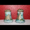 Hand Painted Antique Salt & Pepper shakers with lotus flowers