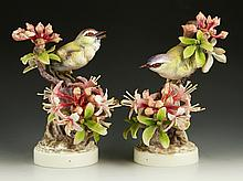 Pair of Royal Worcester Red Eyed Vireos