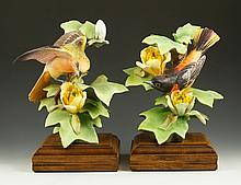 Pair of Royal Worcester Baltimore Orioles