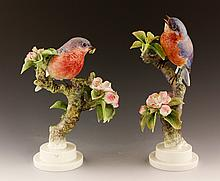 Pair of Royal Worcester Bluebirds