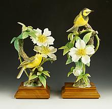 Pair of Royal Worcester Hooded Warblers