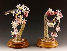 Pair of Royal Worcester Myrtle Warblers