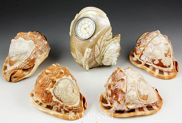 5 Carved Sea Shells