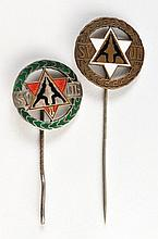 Two Pins - Jewish Sports Organization