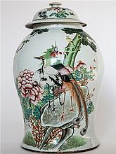 CHINESE PORCELAIN FAMILLE ROSE GINGAR JAR