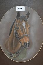 Head and shoulder portrait of a horse by Judy Good