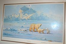 David Shepherd, signed Limited Edition print, ' Polar Bear Country ',  No. 798 of 950