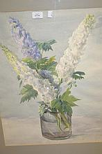 Dorothy King, watercolour, study of Delphiniums in a vase, 28ins x 22ins