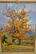 Alexander Zavershinsky, 20th Century Russian school watercolour, study of trees, signed and dated 1992, 23ins x 15ins, framed