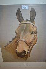 Desmond Snee, two artist signed Limited Edition prints, portraits of the racehorses ' Arkle' and ' Dawn Run '