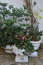 3 Concrete Pots (Various Sizes) -