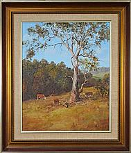 Kevin Best (1932 - 2012) - The Craggy Snowgum, Berridale 50 x 40cm