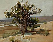 Deladier Almeida, 20th century, Abiquiu reservoir, 2009, oil on canvas, 24 x 30 inches