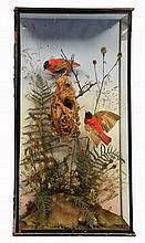 A PAIR OF RED PLUMED EXOTIC BIRDS preserved within