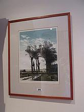 Framed Engraving The Winter Trees Signed by John