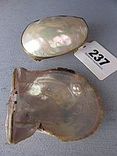 Pearl Trinket Box And Oyster Shell with Pearl