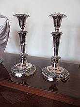 Pair of Edwardian Silver Plated Candlesticks Each