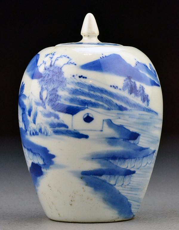 Chinese Qing Kangxi Blue & White Covered Jar