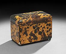 English Regency-Style Tortoiseshell Tea Caddy
